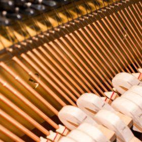 Vleugel en rechtop staande piano mechaniek